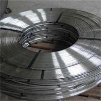 Metallic Strip for SWG Outer and Inner Ring